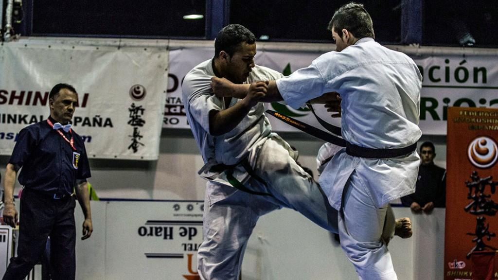 fke_shinkyokushin_fight